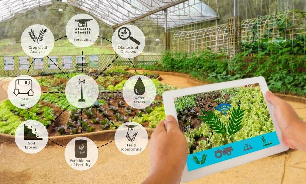 L'agritech et l'agriculture de précision