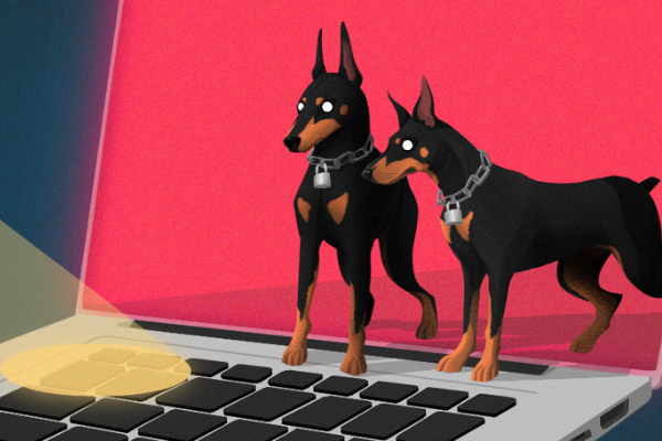 Transmit Security, la licorne qui fait oublier les mots de passe